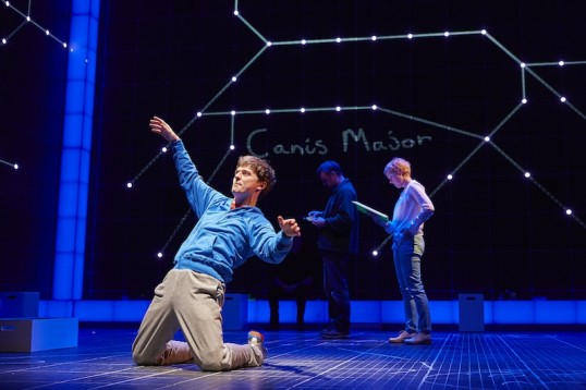 Joshua Jenkins (Christopher) in The Curious Incident. Photo by BrinkhoffM+Âgenberg (2)